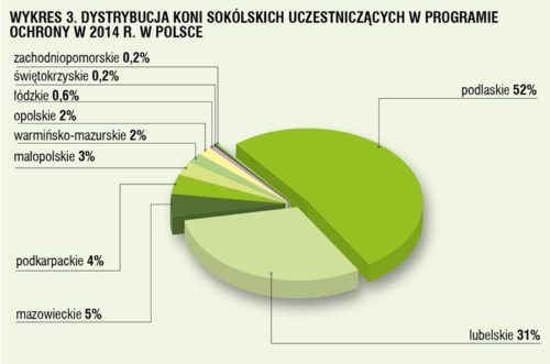 06_Polak-wykres3