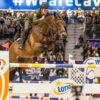Cavaliada - Hodowca i Jeździec
