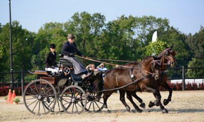 fot. Paulina Peckiel - Hodowca i Jeździec