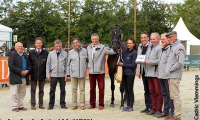 Karioka - Hodowca i Jeździec