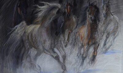 obraz koni 2
