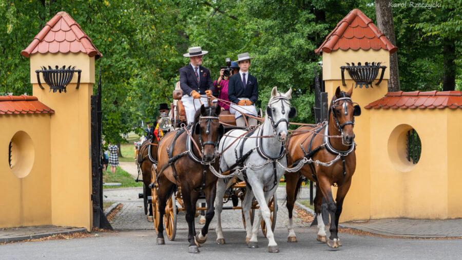 Hiszpan Jose Vario Garrido i trójka koni polskiej hodowli