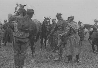 Badanie koni kawaleryjskich