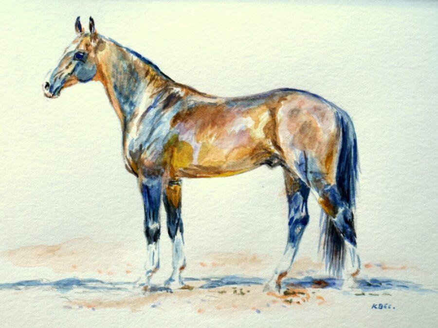 Obraz autorstwa Kingi Bec przedstawiający gniadego konia wpozycji zootechnicznej.