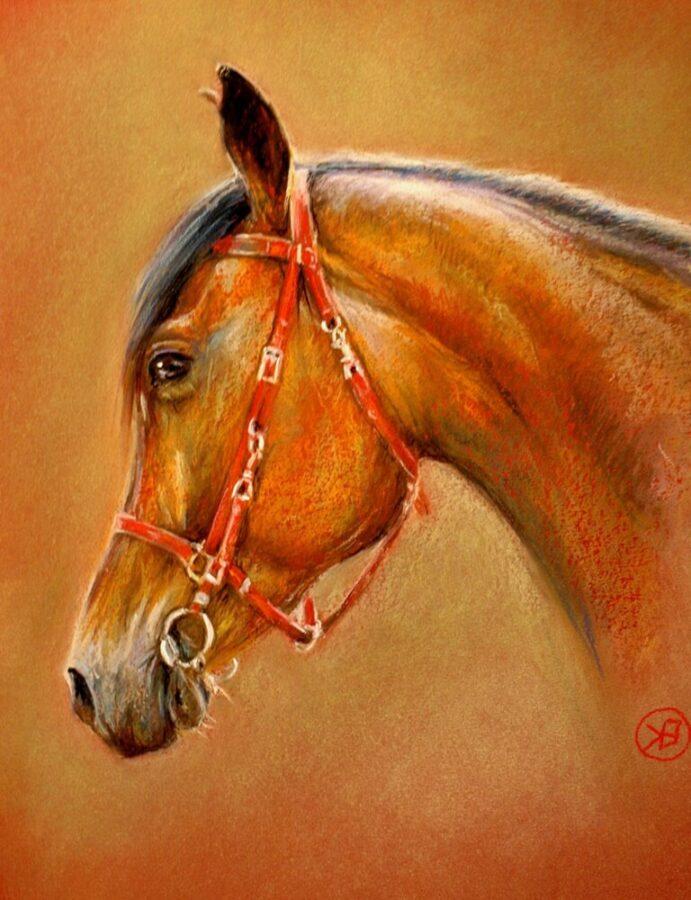 Obraz autorstwa Kingi Bec przedstawiający portret gniadego konia.