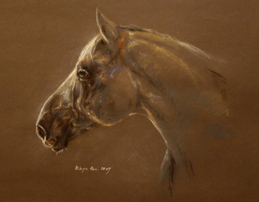 Obraz autorstwa Kingi Bec przedstawiający portret siwego konia.