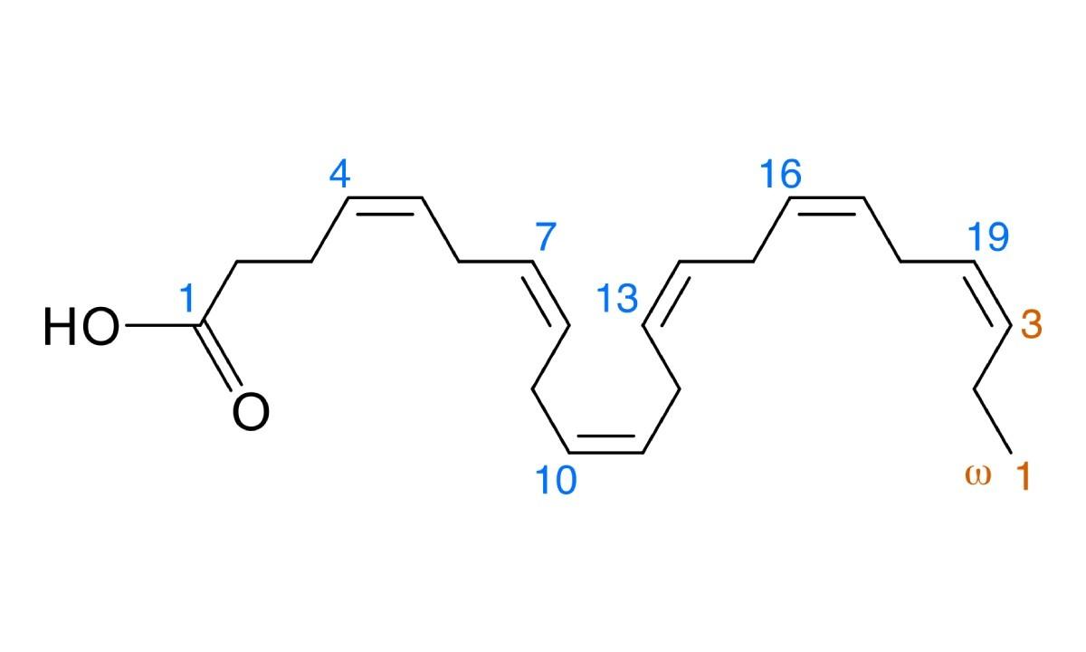 Wzór chemiczny DHA