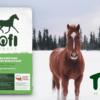 Tofi Horses