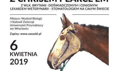 """Konferencja """"Znaczenie zdrowych zębów dla osiągnięć treningowych konia"""""""