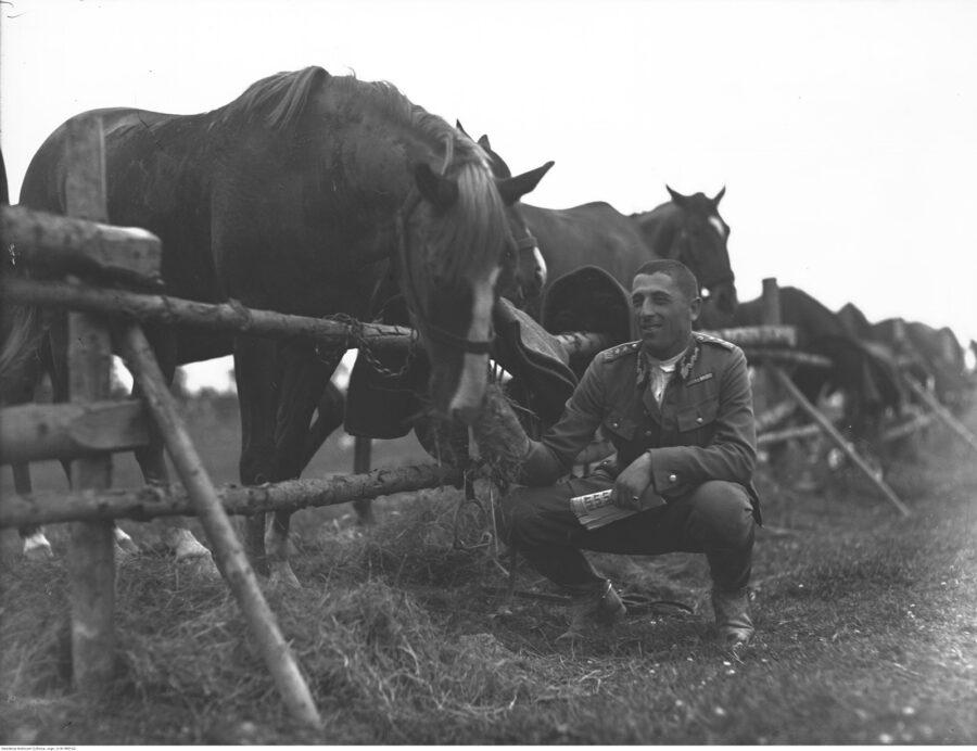 Porucznik WP podczas karmienia konia