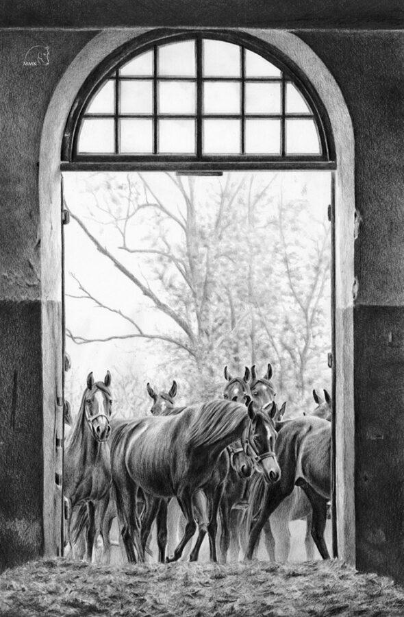 Rysunek koni wstajni