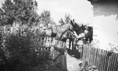Ułani podczas oporządzania koni przy wiejskiej chacie
