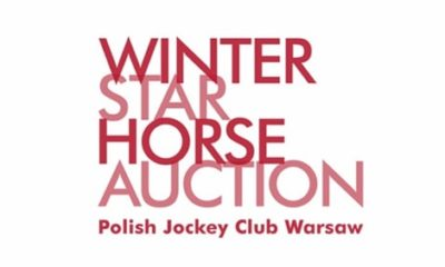 Winter Star Horse Auction